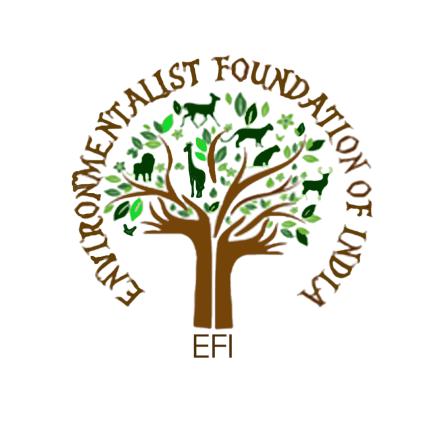 EFI Logo.png