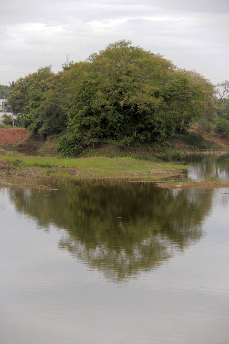 karasangal-lake-21