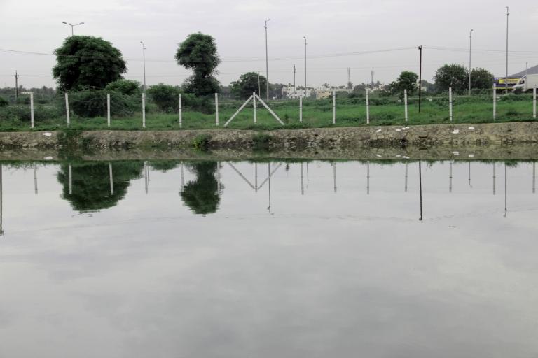 mudichur-pond-1