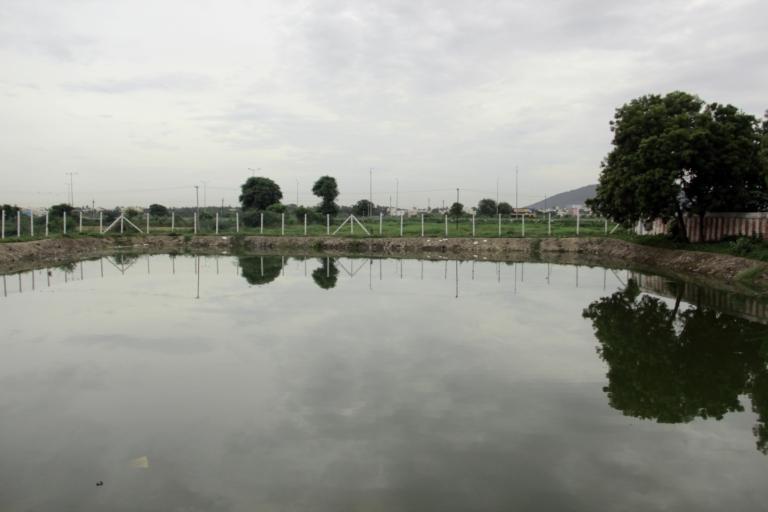 mudichur-pond-2
