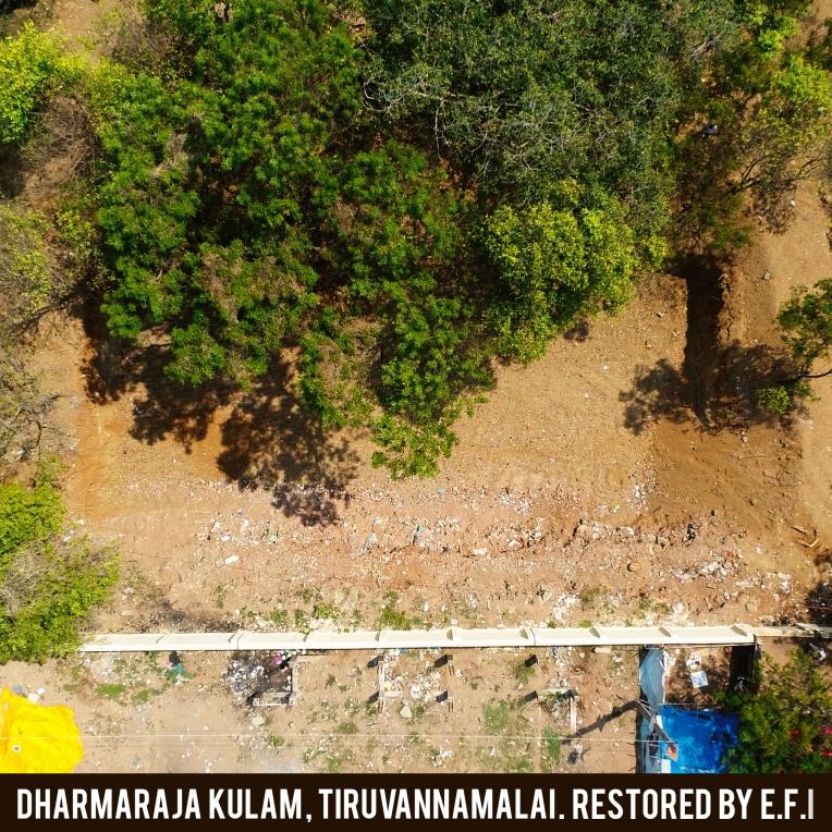 Dharamaraja Kulma 2
