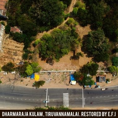 Dharamaraja Kulma 3