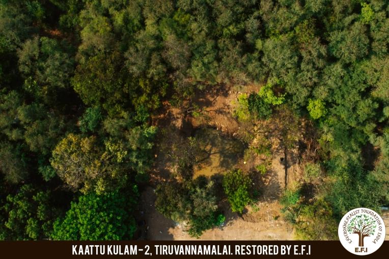 Kaattu Kulam 2_7