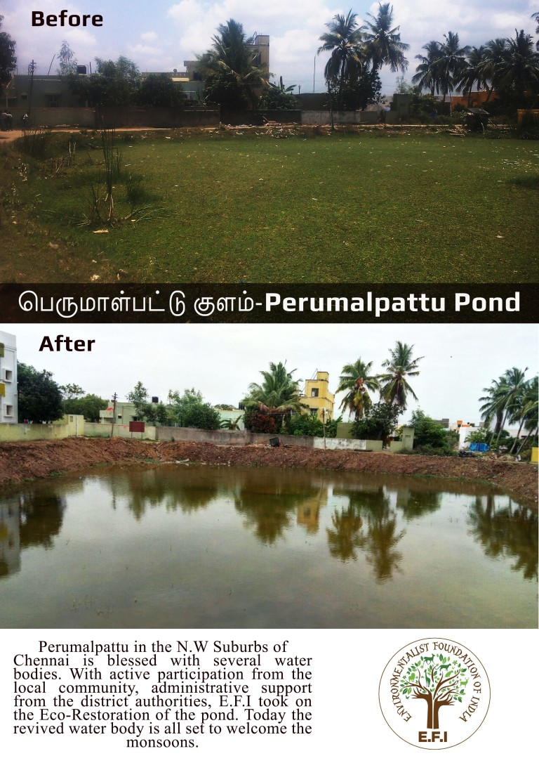 Perumalpattu B4-After